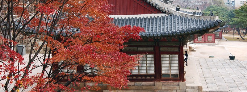Сеул — Дворцы Changdeokgung и Changgyeonggung