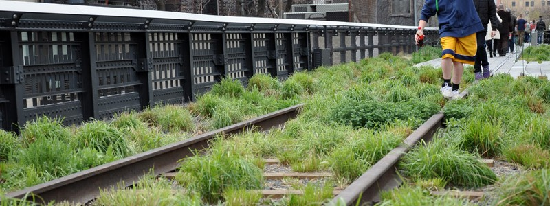 New York – High Line Park